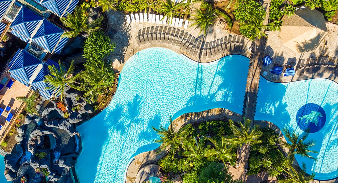 overhead view of large pool complex with palm trees