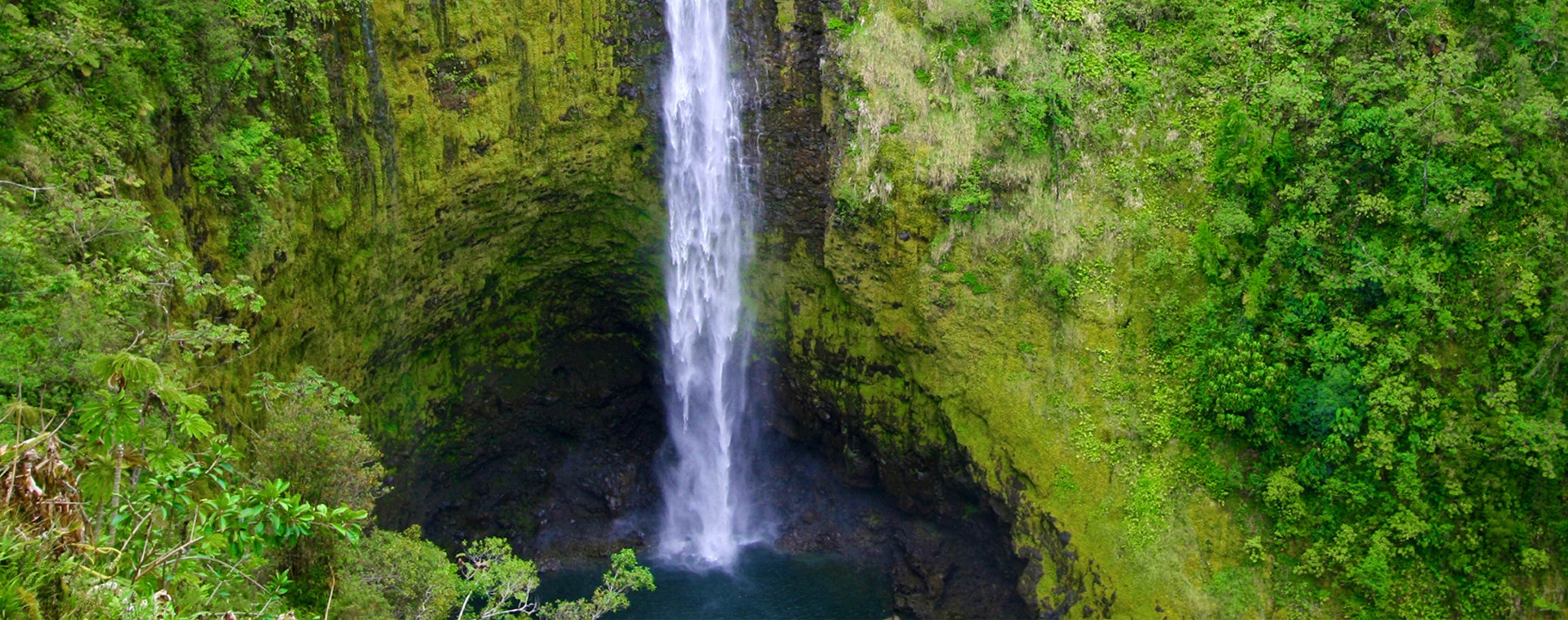 Nature & Outdoor Activities in Big Island Hawaii